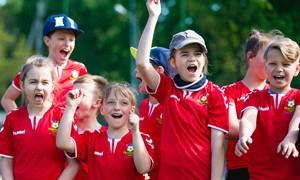Lietuvos masinio futbolo pasiekimai įvertinti UEFA seminare