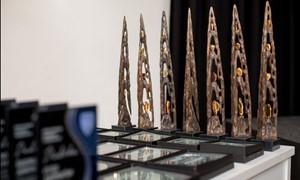 Šiaulių futbolo bendruomenę apdovanojimai ir padėkos pasieks po karantino